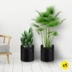 Fabric Plant Grow Bags