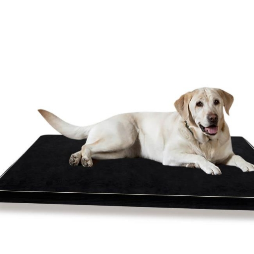 Picture of PaWz Pet Bed Dog Beds Cushion Cover Mat Soft Calming Pillow Mat Puppy Bedding5cm | Free Delivery