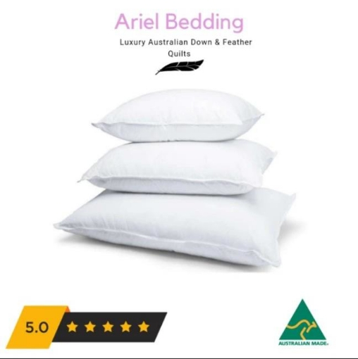 Picture of Ariel Miracle 50percent Duck Down Pillows European 65cm x 65cm | Free Delivery