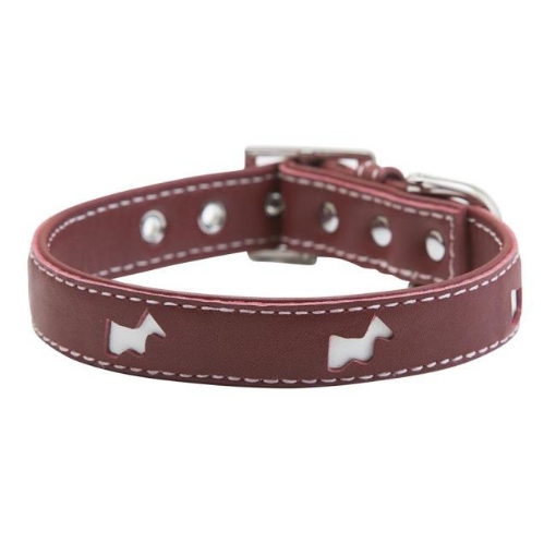 Picture of Red Hamish Dog Collar Size Medium | Free Delivery