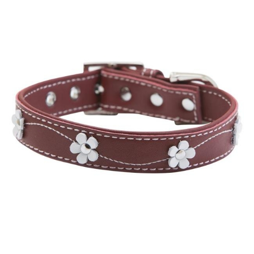 Picture of Lucy Red Dog Collar Size Medium Red   Free Delivery