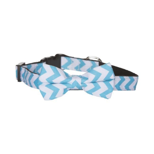 Picture of Bow Tie Dog Collar - Blue Chevron Size Medium | Free Delivery