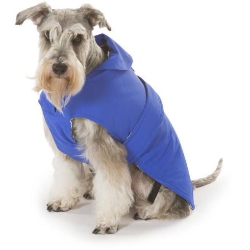 Picture of Blue Dog Coat Size 35cm | Free Delivery