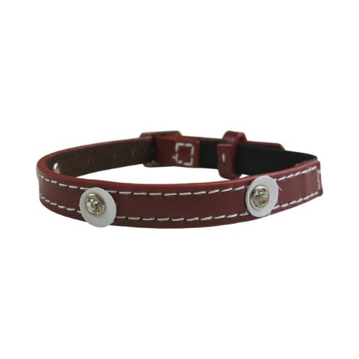Picture of Moet Red Cat Collar Color Red | Free Delivery