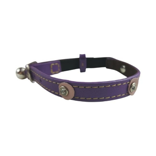 Picture of Moet Purple Cat Collar Color Purple | Free Delivery