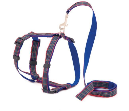Picture of Blue Tartan Dog Harness | Free Delivery