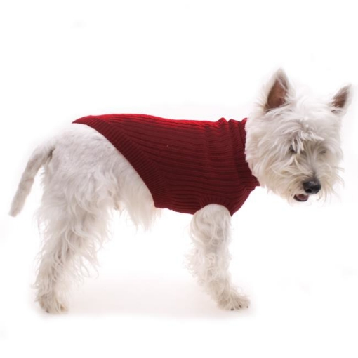 Picture of Red Dog Jumper Size 25cm | Free Delivery