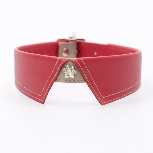Picture of Saville Row Red Dog Collar Size Small | Free Delivery