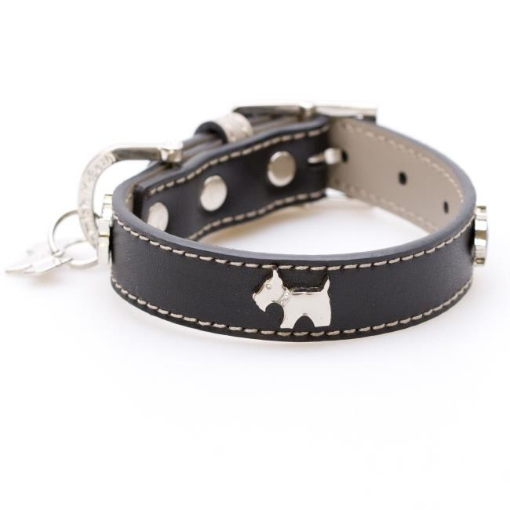 Picture of Black Bling Dog Collar Size Small | Free Delivery