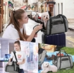 Picture of Light Weight Soft Sided Foldable Durable Polyester Pet Carrier Bag   Free Delivery